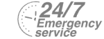 24/7 Emergency Service Pest Control in Wembley Park, HA9. Call Now! 020 8166 9746